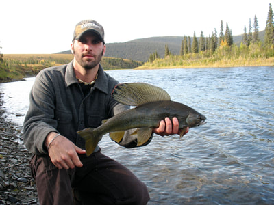 Kenai Mountains Grayling fishing in Alaska