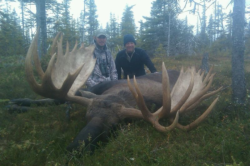 Moose hunting in Alaska